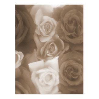 Cartão Postal rosas do vintage