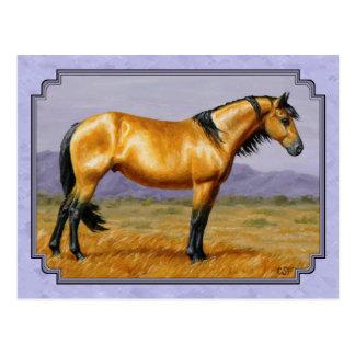 Cartão Postal Roxo do garanhão do Buckskin do cavalo selvagem