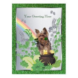 Cartão Postal Rua Pattys do filhote de cachorro do yorkshire