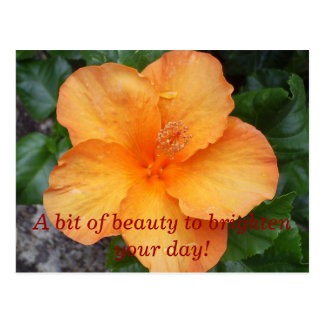 Cartão Postal S5030253, bocado de A da beleza para iluminar seu