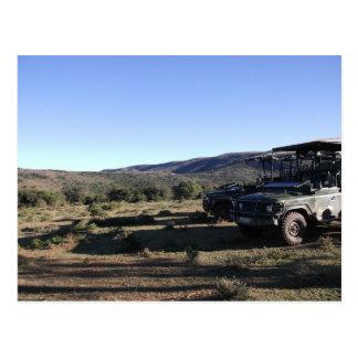 Cartão Postal Safari da paisagem do jipe