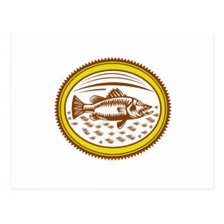 Cartão Postal Sal-água-barramundi-lado-OVAL
