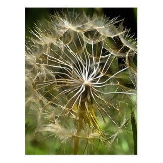 Cartão Postal Salsify da flor do Tragopogon