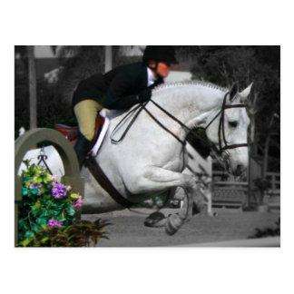 Cartão Postal Salto árabe do cavalo