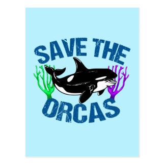Cartão Postal Salvar as orcas bonitos
