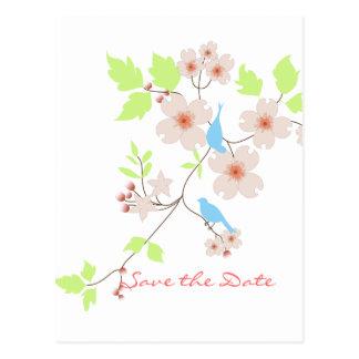 Cartão Postal Salvar os dogwoods azuis dos pássaros da data dois