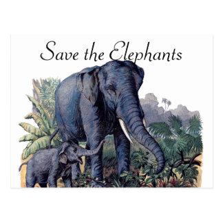 Cartão Postal Salvar os elefantes
