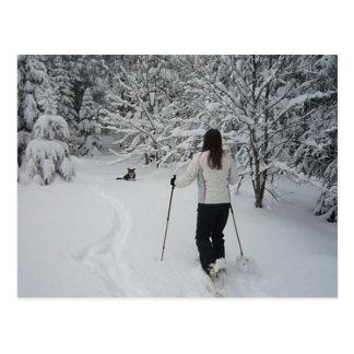Cartão postal sapato de neve migram