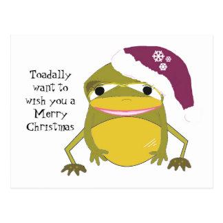 Cartão Postal Sapo cómico em um chapéu do Natal