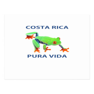 Cartão Postal Sapo de árvore eyed vermelho Costa Rica Pura Vida