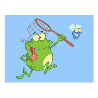 Cartão Postal Sapo que persegue a mosca com rede