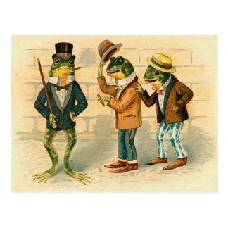 Cartão Postal Sapos engraçados do vintage