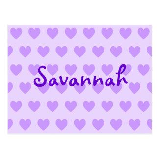 Cartão Postal Savana no roxo