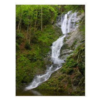 Cartão Postal Savoy das quedas do ribeiro de Ross da cachoeira