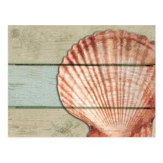 Cartão Postal Scallop Shell