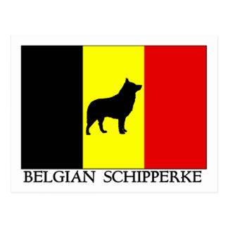 Cartão Postal Schipperke belga