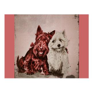 Cartão Postal Scotties no amor