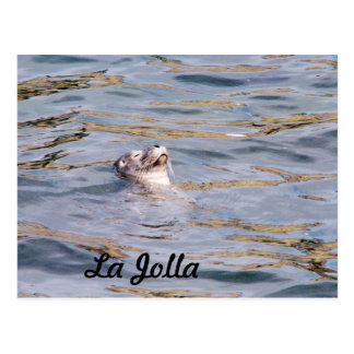 Cartão Postal Selo de La Jolla