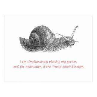 Cartão Postal Sementes da sementeira & dissidência da sementeira