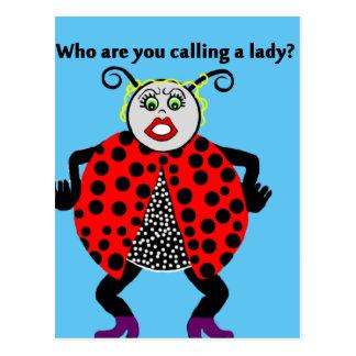 Cartão Postal Senhora Desinsetar Engraçado do joaninha