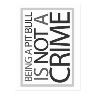 Cartão Postal Ser um pitbull não é um crime