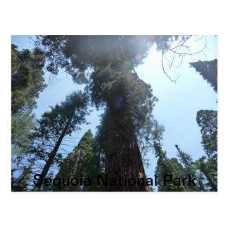 Cartão Postal Série do parque nacional
