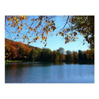 Cartão Postal Sete árvores e lagoas da queda dos primaveras
