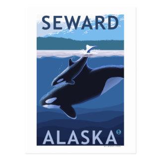 Cartão Postal Seward, AlaskaOrca e cena da vitela
