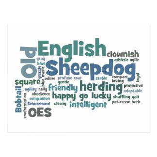 Cartão Postal Sheepdog inglês velho