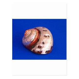 Cartão Postal Shell no azul