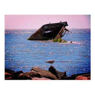 Cartão Postal Shipwreck de Cape May