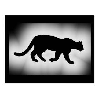 Cartão Postal Silhueta do leão de montanha do puma do puma