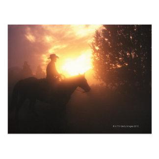 Cartão Postal Silhueta do vaqueiro em um cavalo
