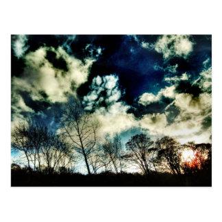 Cartão Postal Silhuetas moventes da árvore contra nuvens