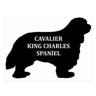 Cartão Postal Silo conhecido descuidado do rei Charles
