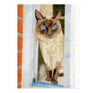 Cartão Postal Simone na janela (Siamese)