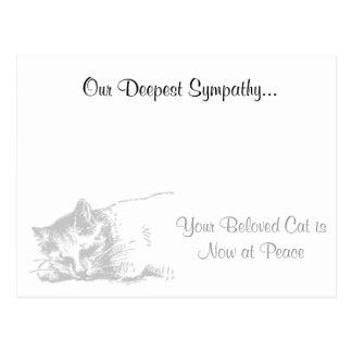 Cartão Postal Simpatia do veterinário do gato