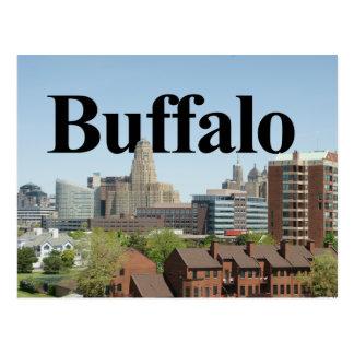Cartão Postal Skyline de New York do búfalo com o búfalo no céu