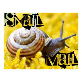 Cartão Postal Snail mail