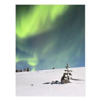 Cartão Postal Snowscape verde da aurora boreal de Borealis da