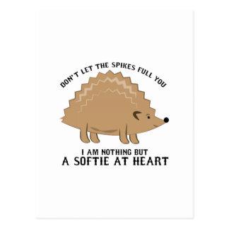Cartão Postal Softie no coração