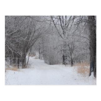 Cartão Postal Solidão do inverno
