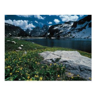 Cartão Postal Solidão do lago, parque nacional grande de Teton,