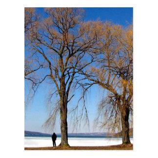 Cartão Postal Solidão - lago Cayuga