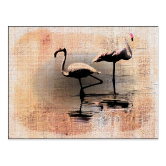 Cartão Postal Sonhos do flamingo