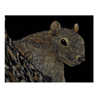 Cartão Postal Sparkie o esquilo
