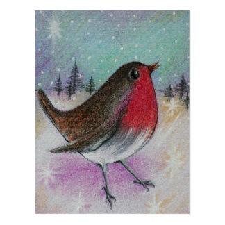 Cartão Postal Sr. Natal Pisco de peito vermelho
