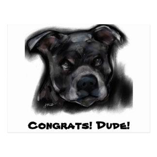 Cartão Postal Staffordshire Terrier americano