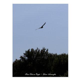Cartão Postal Suba como Eagle