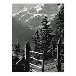 Cartão Postal Suiça Jungfrau do vintage, Bernese Oberland